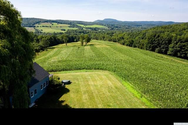 103 Hilltop Road, Gallatin, NY 12501 (MLS #134918) :: Gabel Real Estate