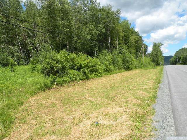0 State Route 22, Stephentown, NY 12168 (MLS #134924) :: Gabel Real Estate