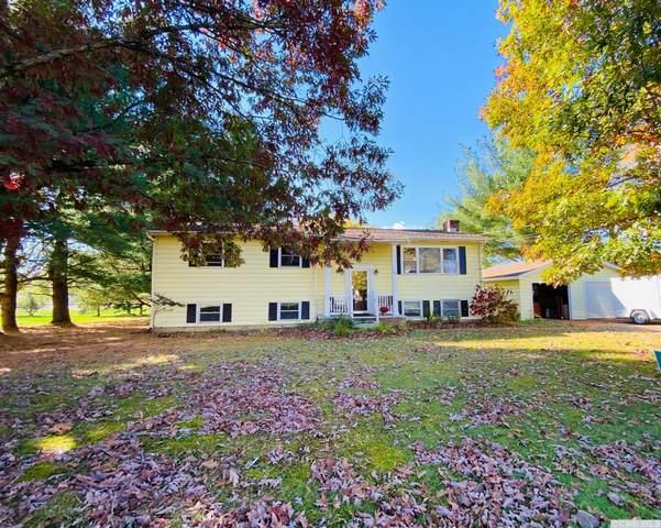 56 Maple Ave, Ghent, NY 12075 (MLS #134957) :: Gabel Real Estate