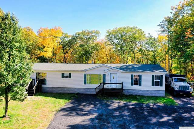 700 Pennsylvania Ave, Palenville, NY 12463 (MLS #134969) :: Gabel Real Estate