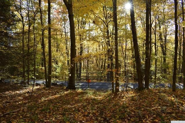0 Schrader Road, Ashland, NY 12496 (MLS #134981) :: Gabel Real Estate