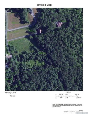 0 N Bald Hills Road, Round Top, NY 12473 (MLS #134987) :: Gabel Real Estate