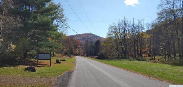 236 Dent Road, Prattsville, NY 12468 (MLS #135006) :: Gabel Real Estate