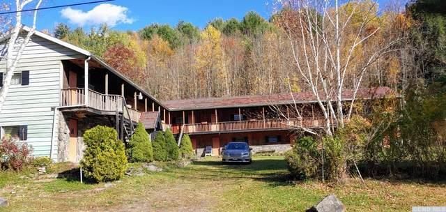 236 Dent Road, Prattsville, NY 12468 (MLS #135016) :: Gabel Real Estate