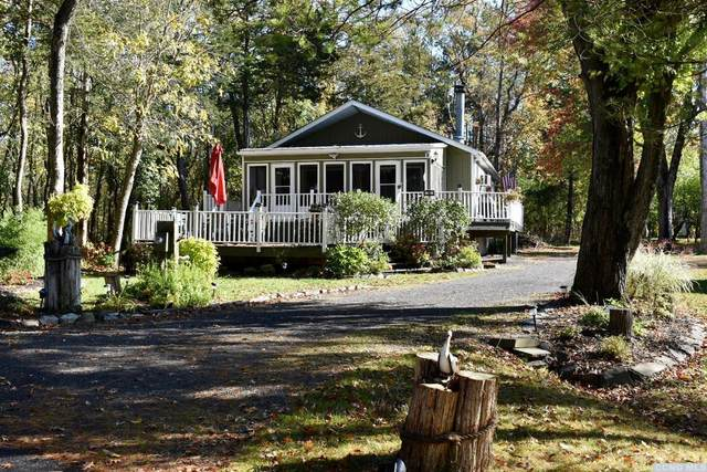 16 Sleepy Court, Coxsackie, NY 12051 (MLS #135024) :: Gabel Real Estate