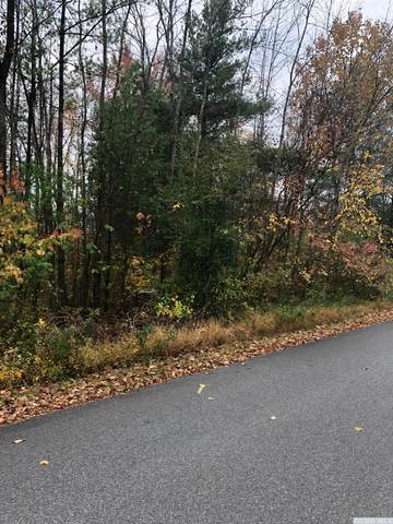85 Tommy Trail, Coxsackie, NY 12051 (MLS #135084) :: Gabel Real Estate