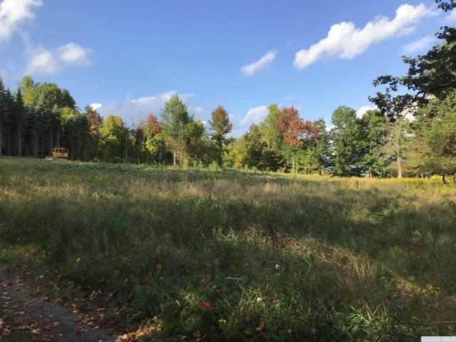 155 Woodland Road, Taghkanic, NY 12523 (MLS #135087) :: Gabel Real Estate