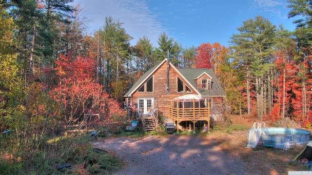 41 Pine Street, Cairo, NY 12413 (MLS #135116) :: Gabel Real Estate