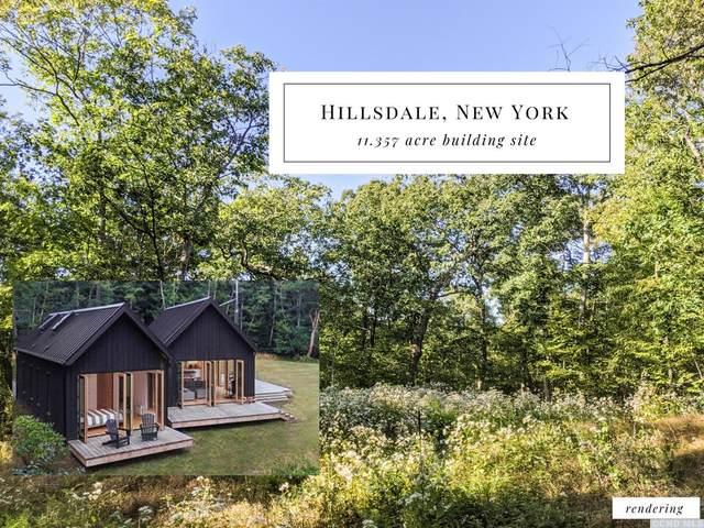 0 Lockwood Road, Hillsdale, NY 12529 (MLS #135122) :: Gabel Real Estate