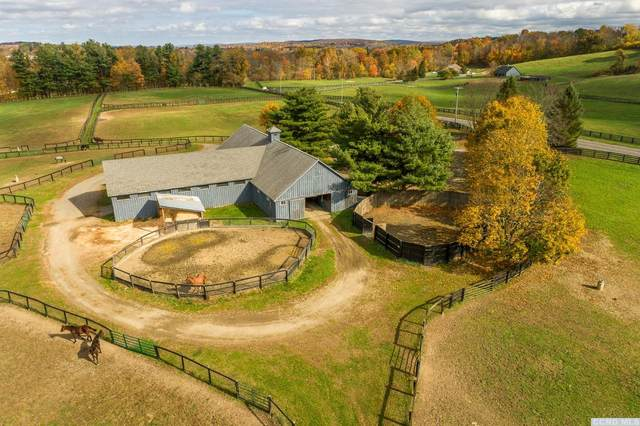 0 State Route 203, Chatham, NY 12132 (MLS #135130) :: Gabel Real Estate