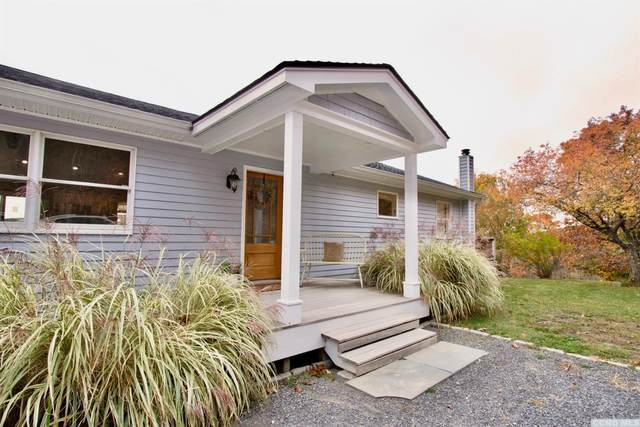 649 Cty Route 7, Gallatin, NY 12567 (MLS #135273) :: Gabel Real Estate