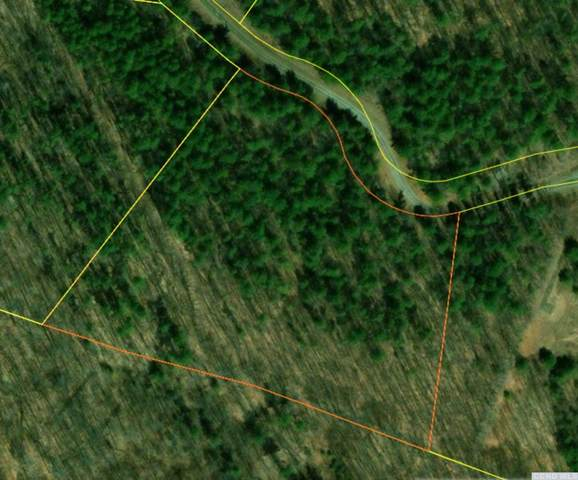 0 Old Ghost Rd Lot #5, New Lebanon, NY 12125 (MLS #135371) :: Gabel Real Estate