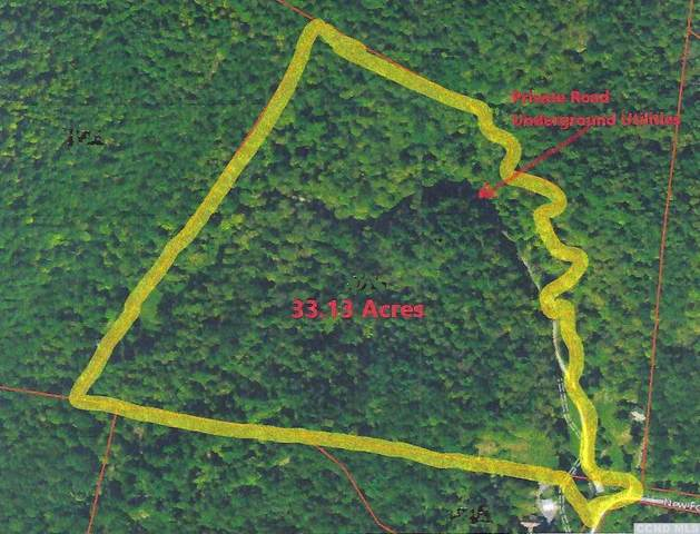 0 New Forge Road 1, Taghkanic, NY 12502 (MLS #135447) :: Gabel Real Estate