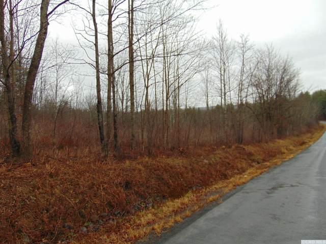 0 Shun Pike Road, Esperance, NY 12066 (MLS #135474) :: Gabel Real Estate