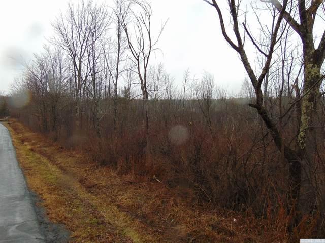 0 Shun Pike Road, Esperance, NY 12066 (MLS #135475) :: Gabel Real Estate