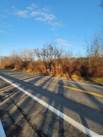 0 Route 20, Esperance, NY 12066 (MLS #135478) :: Gabel Real Estate