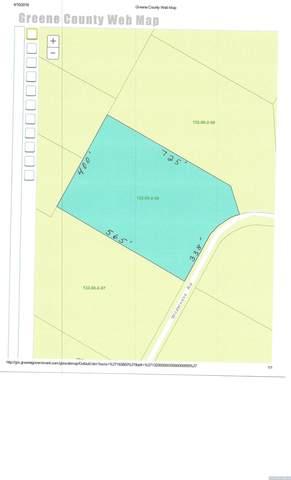 165 Wilderness Road, Jewett, NY 12424 (MLS #135501) :: Gabel Real Estate