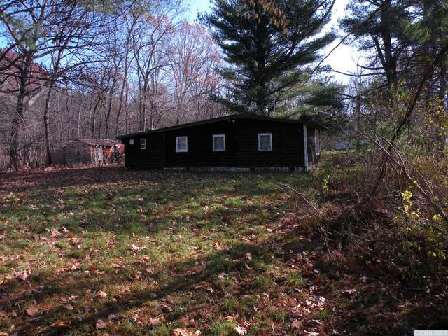 0 County Route 27, Taghkanic, NY 12516 (MLS #135509) :: Gabel Real Estate