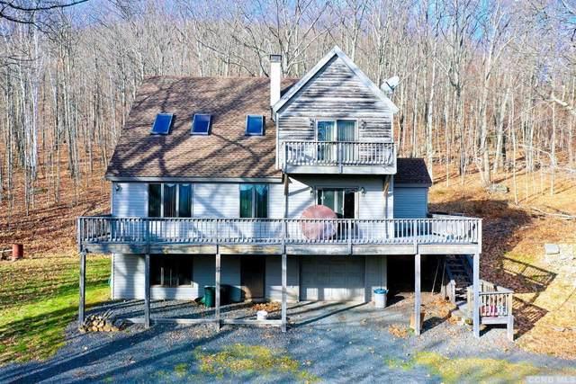 138 Acorn Drive, Jewett, NY 12444 (MLS #135531) :: Gabel Real Estate