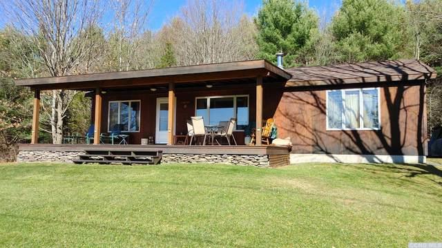 129 Alpine View Rd., Prattsville, NY 12468 (MLS #135544) :: Gabel Real Estate