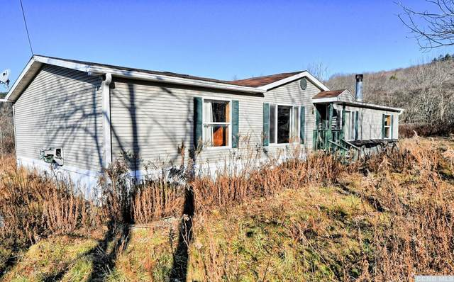 85 Meadow Lane, Kortright, NY 13570 (MLS #135575) :: Gabel Real Estate
