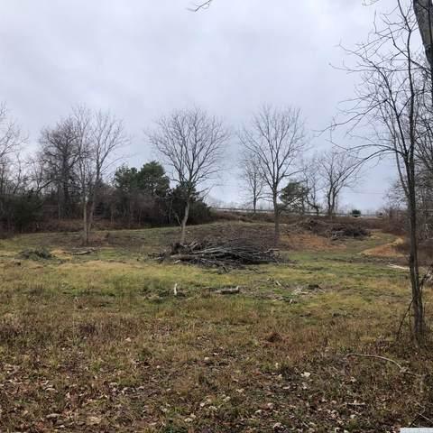 139 Viewmont, Germantown, NY 12526 (MLS #135579) :: Gabel Real Estate