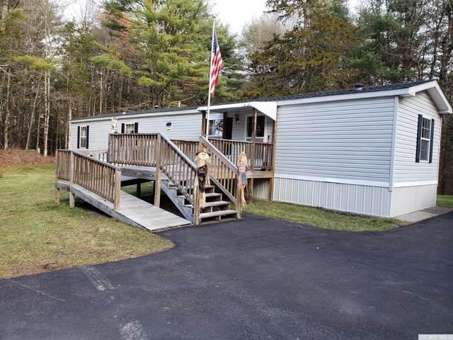 1725 Potic Mt Rd, Earlton, NY 12058 (MLS #135613) :: Gabel Real Estate