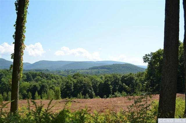 0 Robin Lane Lot 4, Copake, NY 12516 (MLS #135692) :: Gabel Real Estate
