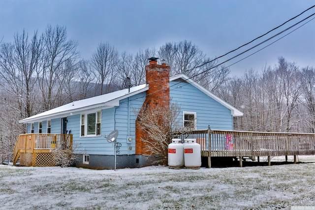 968 Round Hills Road, Jewett, NY 12444 (MLS #135699) :: Gabel Real Estate