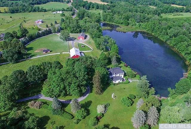 654 County Route 9, Ghent, NY 12075 (MLS #135740) :: Gabel Real Estate