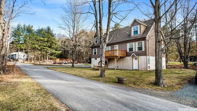 50 Conine Road, Prattsville, NY 12468 (MLS #135758) :: Gabel Real Estate