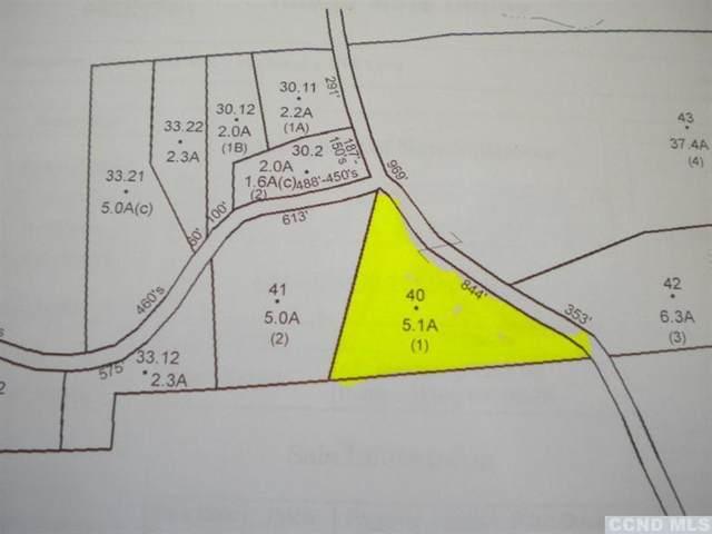 0 Sodom Road, New Baltimore, NY 12124 (MLS #135760) :: Gabel Real Estate