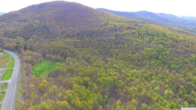0 Route 23, Windham, NY 12496 (MLS #135762) :: Gabel Real Estate
