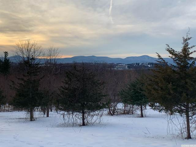 0 Route 9H Lot B, Claverack, NY 12513 (MLS #135782) :: Gabel Real Estate
