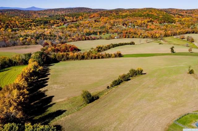 0 Mill Hill Rd, Gallatin, NY 12567 (MLS #135820) :: Gabel Real Estate