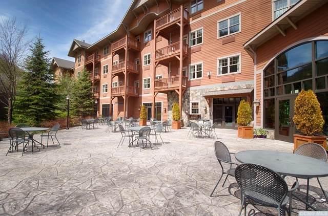 62 Liftside Drive, Hunter, NY 12442 (MLS #135839) :: Gabel Real Estate