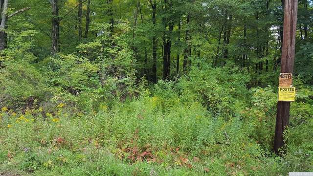 0 County Route 11, Taghkanic, NY 12521 (MLS #135986) :: Gabel Real Estate