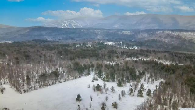 0 Route 77, Jewett, NY 12444 (MLS #135990) :: Gabel Real Estate