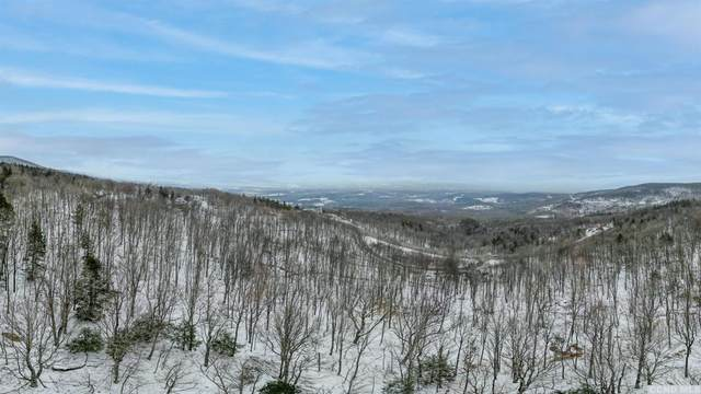 0 Route 23, Durham, NY 12422 (MLS #136006) :: Gabel Real Estate
