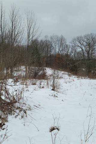1762 State Route 145, Middleburgh, NY 12122 (MLS #136041) :: Gabel Real Estate