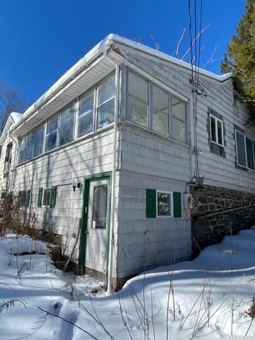 1029 Round Hills, Hunter, NY 12444 (MLS #136065) :: Gabel Real Estate
