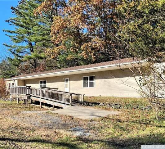 264 Canniff Road, Cairo, NY 12413 (MLS #136092) :: Gabel Real Estate