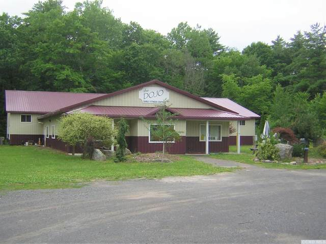 7485 Route 32, Cairo, NY 12413 (MLS #136102) :: Gabel Real Estate