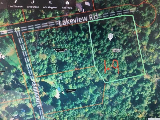 54 Lakeview Lane, East Durham, NY 12423 (MLS #136149) :: Gabel Real Estate