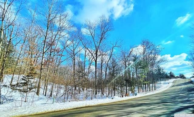574 Sleepy Hollow Road, Athens, NY 12015 (MLS #136188) :: Gabel Real Estate