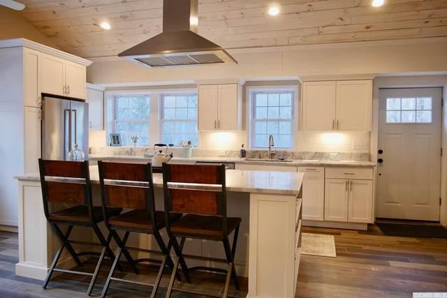 463 Doodletown Road, Gallatin, NY 12502 (MLS #136194) :: Gabel Real Estate