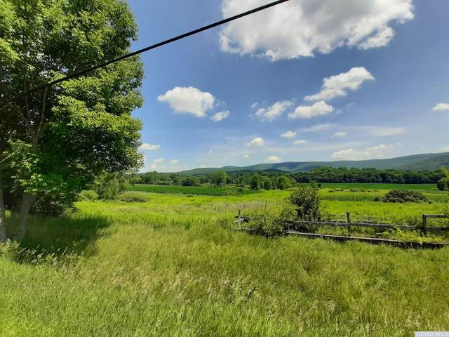 0 County Route 5A, New Lebanon, NY 12125 (MLS #136205) :: Gabel Real Estate