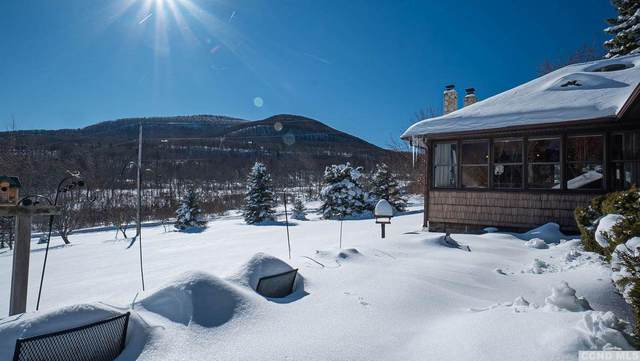 5267 County Route 20, Durham, NY 12422 (MLS #136230) :: Gabel Real Estate
