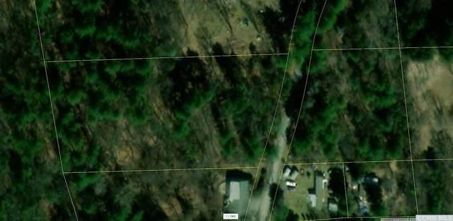 0 Pine Road, Livingston, NY 12523 (MLS #136231) :: Gabel Real Estate