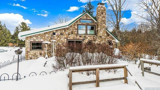 524 Rice Street, Jewett, NY 12444 (MLS #136267) :: Gabel Real Estate